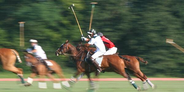Equestrian activities at Miserden